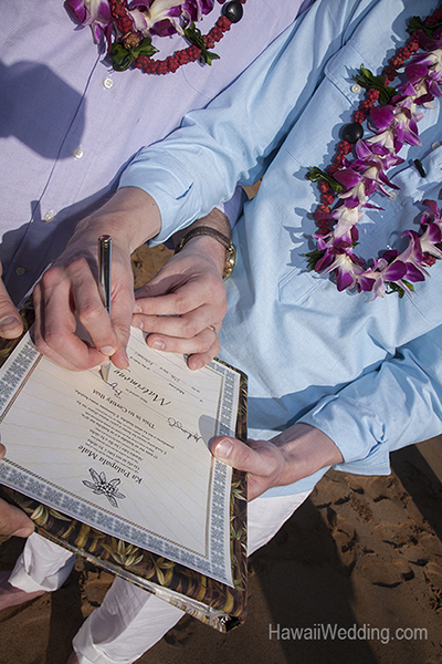 obtaining a marriage license on Maui
