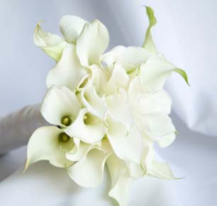 mini calas maui wedding flowers
