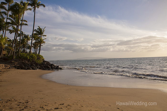 Sugar Beach location for gay and lesbian wedding on Maui